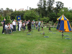 medieval Activity Days - Falconry Displays